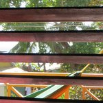 A colorful view through the shutters