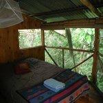 La vue de notre Jungle room !