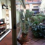 l'angolo verde...e l'angolo dei vini