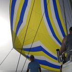 Capt.Bob, The Sunluver and the spinnaker