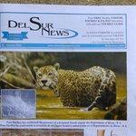 The Del Sur News