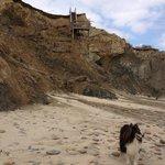 Lucy Vincent beach cliffs