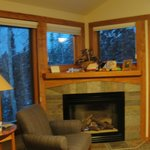 Fireplace in Poplar River condo