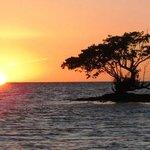 Sunset on Smallwood Boat Tour