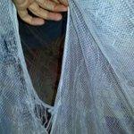 """""""Mosquito net"""""""