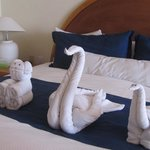 Beautiful towel arrangements !