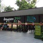 Zoo Entrance (River Safari Entrance is actually another hundred metres plus away)