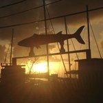 barracuda at sunset