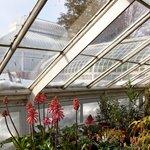 Mount Holyoke College Botanic Gardens and Talcott Greenhouse