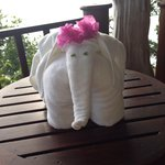 One of the many towel animals... I loved this one