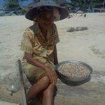 Jimbaran Beach - woman collecting baby clams
