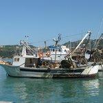 I fornitori locali di EN TRAGIA : PESCE FRESCO PESCATO NELLA NOTTE