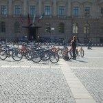 1e tour: groep fietsen