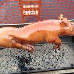 Roasting Suckling Pig