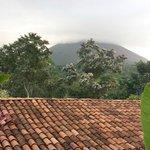 amazong view