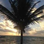 Xanadu Sunrise