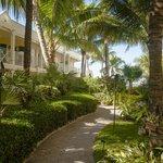 Orchid Garden Path