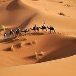 camel trekking and nghit in desert merzouga