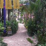 Walk through Dos Ceibas to the beach