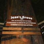 Jeans Memorial Grove