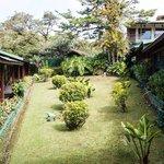 Center Garden