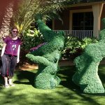 Posing by crocodile-shaped hedges!