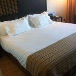 Mooi en ruim bed