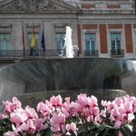 Flowers and fountain in the square