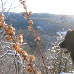 Randonnées pédestres + ski de fond dans la région Magnifique !