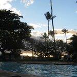 The pool area at dusk, Feb 2014