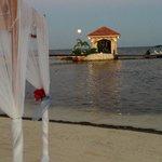 Moonlight Over Coco Beach Dock