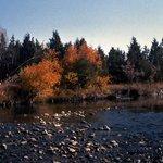 Montana In The Fall
