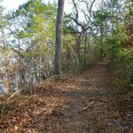 Baines Creek Trail