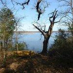 Baines Creek Trail overlooking lake