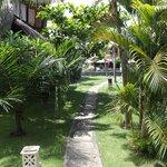 Flower Bud Bungalows - Uluwatu Bali Indonesia - Balangan Beach - path