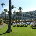 Hotel lawn and pools