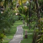 Flower Bud Bungalows - Uluwatu Bali Indonesia - Balangan Beach - path through the resort