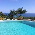 Pool and Caribbean