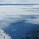 フレぺ滝下の流氷