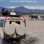 Kenya and  tanzania tour with super cats tours and travel.