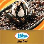 Sizzling Brownie!!