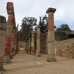 Columnas.
