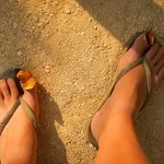 These two butterflies loved to sit on my feet!