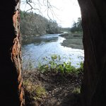 Cave to River Eden