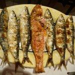 sardinas y salmonte a la brasa