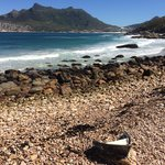Houtbay View