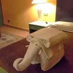 one elefant in my room