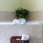 Spa Suite whirlpool tub