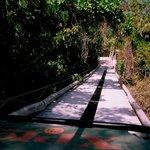 Crossing a bridge in the amphibeous vehicle
