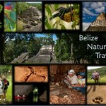 Belize Nature Travel